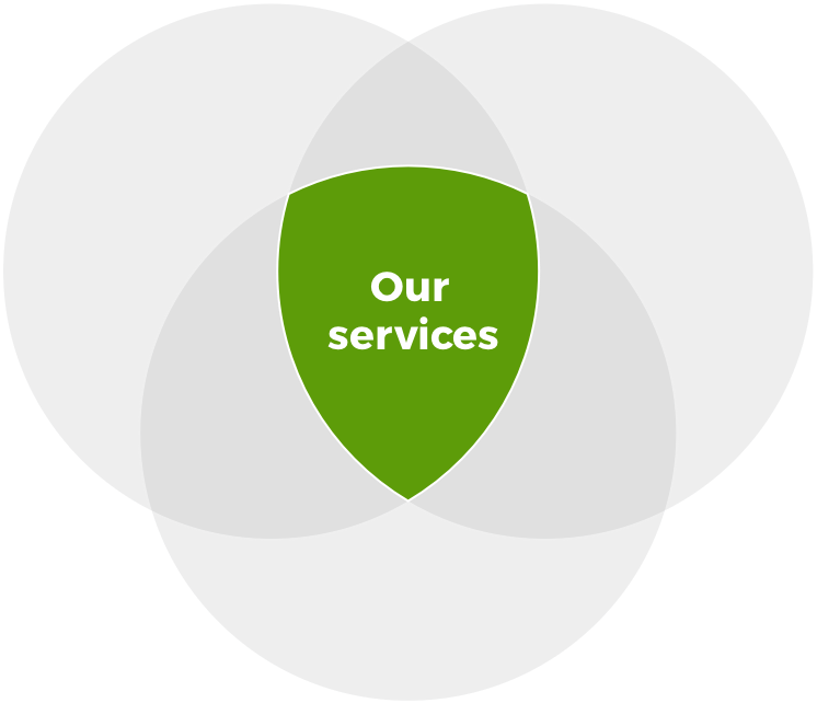 Services diagram